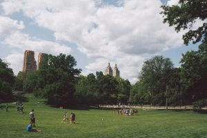 one of the NYC parks