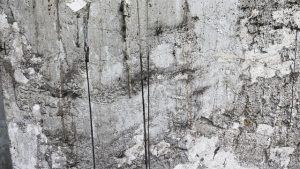 A moldy, stained wall. Professionals are definitely better at handling mold in your NYC home.
