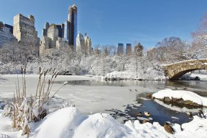 view to New York during winter